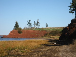 The shores would have been thick with trees but that deep red soil a balm to farmers' hearts.